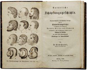 Ernst_Haeckel_-_Natürliche_Schöpfungsgeschichte,_1868