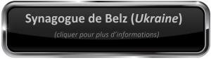 Belz Fotolia_102515739_Subscription_Monthly_M