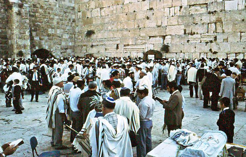L'attribut alt de cette image est vide, son nom de fichier est PikiWiki_Israel_3441_Jewish_holidays.jpg.